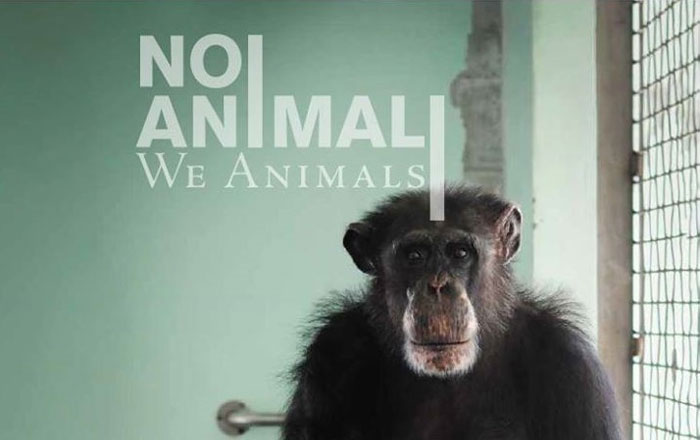 copertina-we-animals